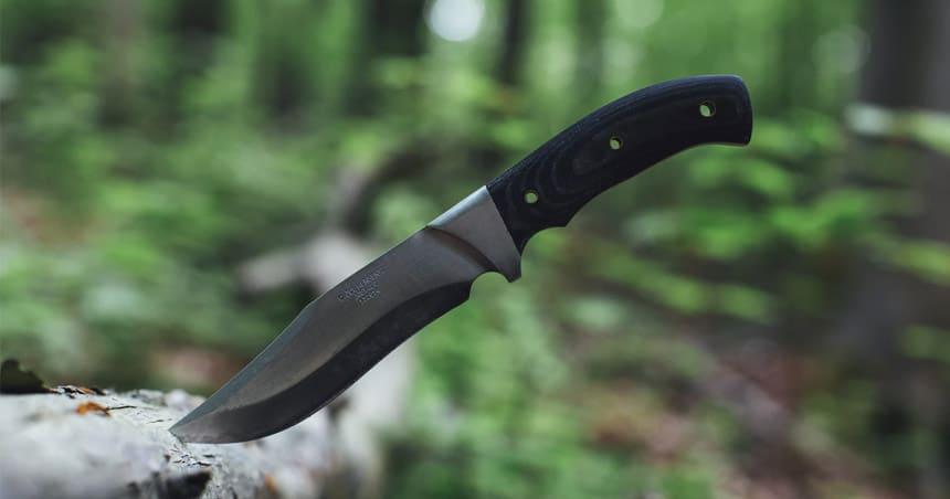 Fixed blade knife stuck in tree.