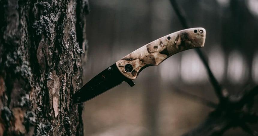 folding knife stuck in tree